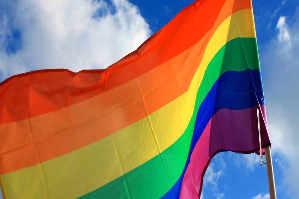 Artigo – Eco Debate – União Homoafetiva, Direitos E Deveres – Artigo De Catia Sturari