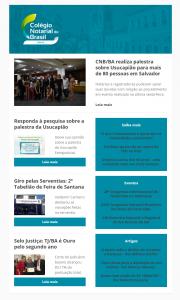 Informe Notarial Baiano Edição Nº 24
